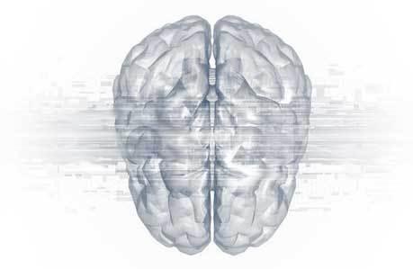 Brain Injury Guide
