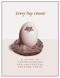 Cover of Every Day Counts