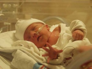 Preemie boy in incubaor